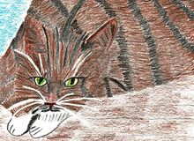 Lovely Tabby Cat Lying on Wood. This is a hand drawn colored pencil drawing. The drawings shows a lovely tabby cat with green eyes and white paws. The cat lies Stock Photo