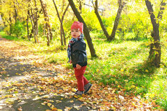 Lovely toddler boy walking in autumn outdoors Royalty Free Stock Images