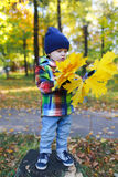 Lovely toddler with maple leaves in autumn park Royalty Free Stock Photo