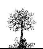 Lovely tree royalty free illustration