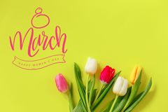 Lovely tulip flowers composition. Beautiful tulips, colored tulips. stock illustration