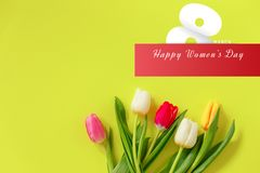 Lovely tulip flowers composition. Beautiful tulips, colored tulips. stock images