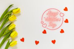 Lovely tulip flowers composition. Beautiful tulips, colored tulips. royalty free stock images