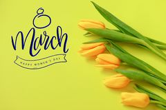 Lovely tulip flowers composition. Beautiful tulips, colored tulips. stock photography