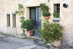 Lovely tuscan doors Stock Photos