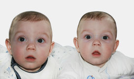 Lovely twins. Adorable twins boys isolated on white background Royalty Free Stock Image