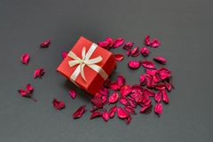 Lovely Valentines Day Gift for the love of life in the centre of rose petals. A lovely gift to your girlfriend/boyfriend or husband/wife in a romantic way stock images