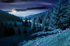 Lovely valley with spruce forest at night. In full moon light. wonderful landscape of Apuseni mountains in autumn. beautiful cloudscape above the ridge. travel stock photography