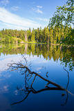Lovely view of the lake on island of Valaam in Russia Royalty Free Stock Photo