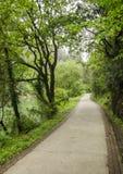Lovely walk Stock Images