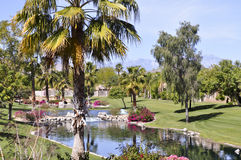 Lovely Waterfall and cooling pond in Palm Springs Royalty Free Stock Photography