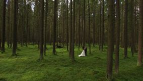 Lovely wedding couple in forest aerial 4k stock video footage