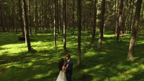 Lovely wedding couple in forest aerial 4k stock video