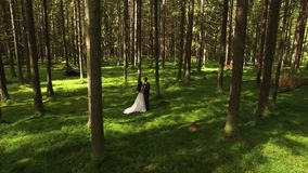 Lovely wedding couple in forest aerial 4k stock footage