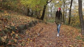 Lovely woman enjoying walk with her dop in forest stock footage