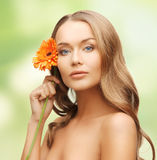 Lovely woman with gerbera flower Royalty Free Stock Images