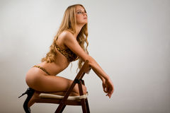 Lovely woman in leopard lingerie Royalty Free Stock Photography