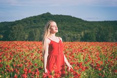 Lovely young blonde girl in a poppy field at sunset. Light. Happiness and beauty people concept royalty free stock photography