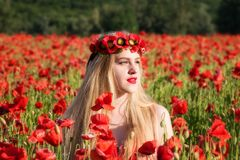 Lovely young blonde girl in a poppy field at sunset. Light. Happiness and beauty people concept royalty free stock image