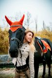 Lovely young woman with a horse royalty free stock image
