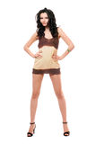 Lovely young brunette in a dress Royalty Free Stock Photography