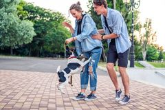 Lovely young hipster couple dating during summer sunset. Lovely young hipster couple walking with dog during summer sunset. they wear jeans clothes. modern stock photography