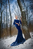 Lovely young lady in elegant blue dress posing in winter scenery, royal look. Fashionable blonde woman with forest in background Royalty Free Stock Photography