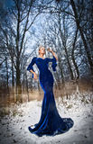 Lovely young lady in elegant blue dress posing in winter scenery, royal look. Fashionable blonde woman with forest in background Stock Photos