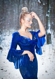 Lovely young lady in elegant blue dress posing in winter scenery, royal look. Fashionable blonde woman with forest in background Stock Image