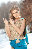 Lovely young lady in elegant dress posing winter scenery, royal look Royalty Free Stock Image