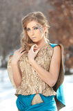 Lovely young lady in elegant dress posing winter scenery, royal look Stock Image