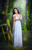 Lovely young lady wearing an elegant long white dress enjoying the beams of celestial light on her face in enchanted woods. Long h Royalty Free Stock Photos