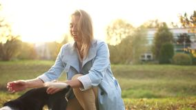 Lovely young woman in a blue cloak is playing in the park with her black and white dog. Autumn walk with a pet stock footage