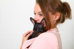 Lovely young woman with Chihuahua  on white background Stock Photography