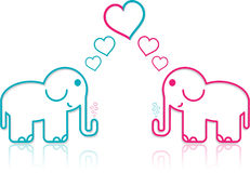 Lover Elephants Royalty Free Stock Image