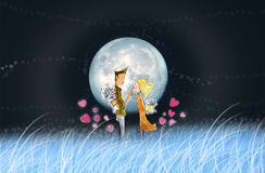 The lover in full moon night Royalty Free Stock Image