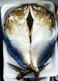 Mackerel omega3 Stock Photos