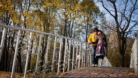 Lovers during autumn Stock Image