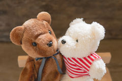 Lovers bear Royalty Free Stock Images