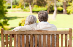 Lovers on the bench. In a park royalty free stock photo