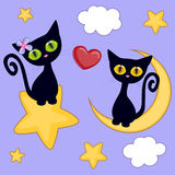 Lovers Black kittens Royalty Free Stock Photos