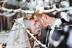 Lovers bride and groom look at each other. In winter day Royalty Free Stock Photography