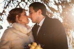 Lovers bride and groom on their winter wedding Royalty Free Stock Photography