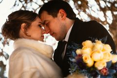 Lovers bride and groom on their winter wedding Royalty Free Stock Photos