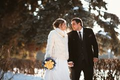 Lovers bride and groom on their winter wedding Stock Photography