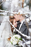 Lovers bride and groom Royalty Free Stock Images