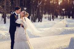 Lovers bride and groom in winter day outdoors with copy space Royalty Free Stock Photo