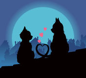 Lovers cats Royalty Free Stock Photography