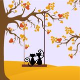 Lovers cats autumn Royalty Free Stock Photo