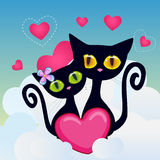 Lovers Cats Stock Image